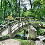 Ładny oraz porządny ogród to zasługa wielu godzin spędzonych  w jego zaciszu w trakcie jego pielegnacji.